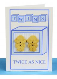 Wholesale Twin boys Card